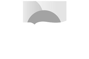 logo-aedn