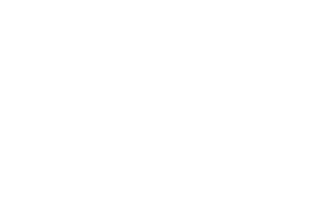 logo-adinu